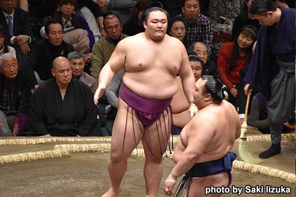 相撲 春 場所 中止